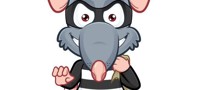 ¿Puede una rata ir por las alcantarillas y subir a tu inodoro?