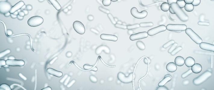 Bacterias para la fosa séptica