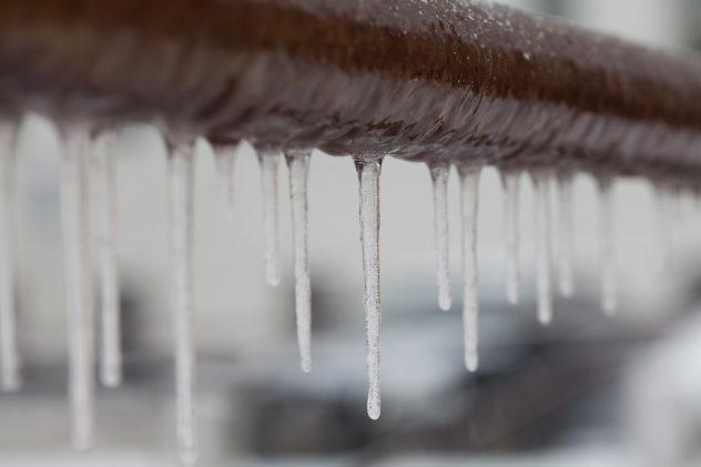 congelen